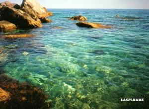 Отдых в Ласпи идеально подходит для плавания и дайвинга